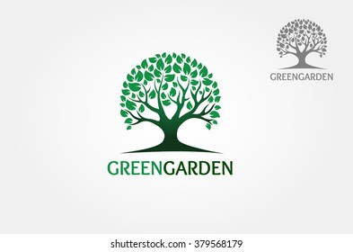 Green Tree isolated on a white background, Vector illustration