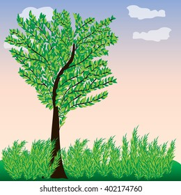 Green tree with leaves. Landscape. Vector illustration.