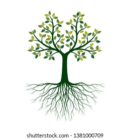 Green Tree of Life with Roots. Vector Illustration. Isolated object.