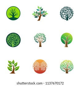 Green tree logo icon. Natural forest template design. Family life community vector illustration