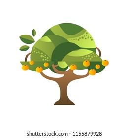 Green tree with oranges, garden plant with ripe fruits vector Illustration on a white background