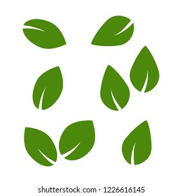 Green tree and plant leaves vector icons isolated on white background. Eco symbols set. Plant green leaf, organic natural floral illustration