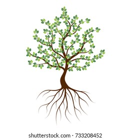 Green tree with roots an icon on a white background.