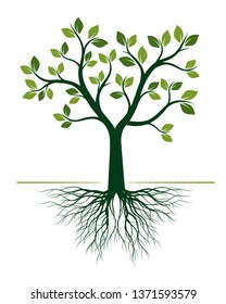 Green Tree with Roots on white background. Vector Illustration. Isolated object.
