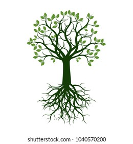 Green Tree with roots. Vector Illustration.