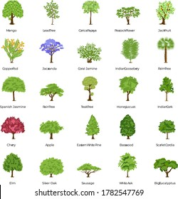 Green Trees Flat Icons Pack