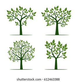 Green Trees with Leaf. Vector Illustration.