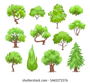 Green trees, pine and bushes vector illustration isolated on white background. Collection of trees in cartoon style.