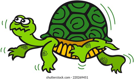Green turtle with prominent carapace while walking in a dubious way, like feeling scared and hesitating when looking for something