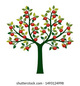 Green Vector Isolated Apple Tree on white background. Red Apple Fruits. Vector Illustration and concept. Plant in garden.