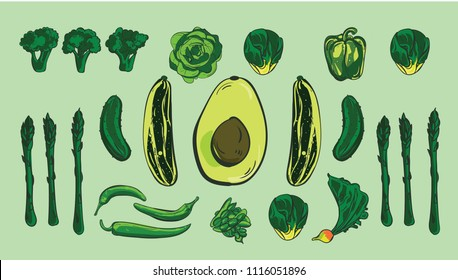 Green Vegetables vector set with cartoon style vegetables avocado, asparagus, lettuce, cucumber, green beans, zucchini, bell peppers. Vegan and healthy life concept. Nutrition and farming concept