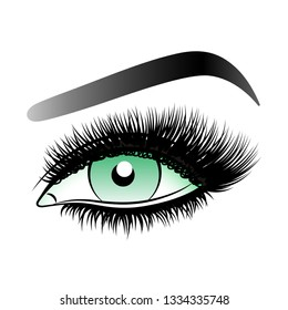 Green woman eye with long false lashes with eyebrows.