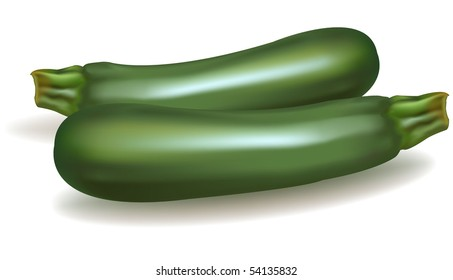 Green zucchini vegetable isolated on white background. Photo-realistic vector illustration.