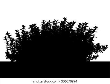 Hebe Stock Illustrations, Images & Vectors | Shutterstock