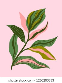 Greenery greeting/invitation card template design, green leaves on the pink background. Vector hand drawn card.