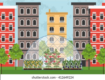 Greenhouse in the city like an example of urban farming or urban gardening