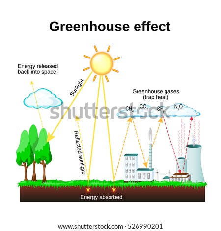 greenhouse effect diagram showing how greenhouse のベクター画像素材