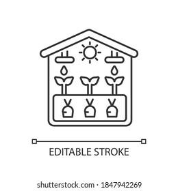 Greenhouse linear icon. Crop from glasshouse. Harvest in hothouse. Gardening structure. Thin line customizable illustration. Contour symbol. Vector isolated outline drawing. Editable stroke