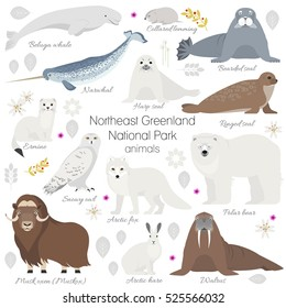 Greenland National park animal set. White polar bear, narwhal, whale, musk ox, seal, walrus, arctic fox, ermine, rabbit, arctic hare