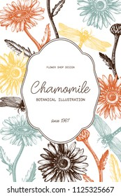 Greeting card or invitation floral design for wedding or other celebration. Vector frame with hand drawn chamomile anf dragonflies sketches. Vintage template.