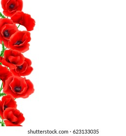 Greeting card Poppies flowers. Can be used as invitation card for wedding, birthday and other holiday and summer background. Vector illustration EPS10