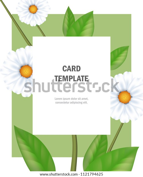 Greeting card template with chamomiles on green frame. Party, event, celebration. Holiday concept. Can be used for invitation, greeting card, brochure