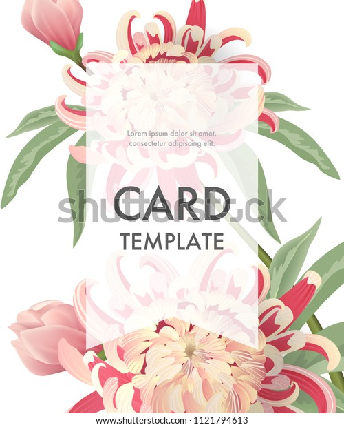 Greeting card template with pink asters and transparent frame on white background. Wedding, Mothers Day, dating. Event concept. Can be used for invitation, greeting card, brochure