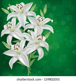 Greeting or invitation card with bouquet white lily flower. Green floral festive background. Vector illustration