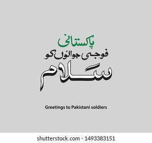 Greetings To Pakistani Soldiers, Vector design elements