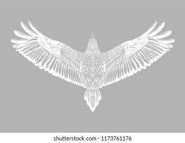 Grey background with hand drawn white raven.Symbol of freedom.Flying bird.Back of eagle. Detailed mascot.White isolated owl on the grey background.Print for t shirt.Animal feathers pattern.