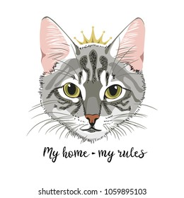 Grey Cat with crown princess queen my home my rules