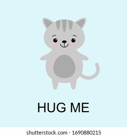 Grey Cat ready for a hugging. Funny animal. Cute cartoon pet on blue background. Vector illustration with lettering phrase Hug Me