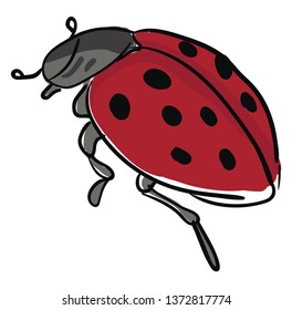 A grey color ladybug having red with black polka dot wings grey body and two antenna vector color drawing or illustration
