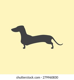 Grey colored silhouette of standing dachshund isolated on yellow background. Logo template, design element
