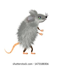 Grey downy mouse Cartoon, mice cute wild or domestic animal, vector character. Rat furry rodent mascot 2020 illustration, isolated on white background. Eps 10.