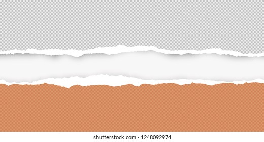 Grey and orange squared ripped horizontal paper are on white background. Vector illustration