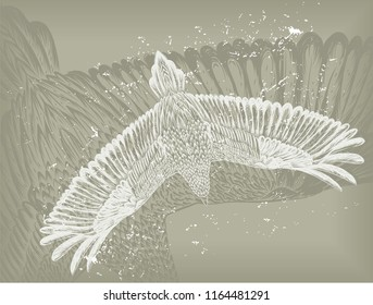 Grey vintage background with hand drawn sparrow. Vector illustration.Grey background with feathers pattern. Grange backdrop for the tattoo salon. Pigeon.Ground with silhouette of bird.