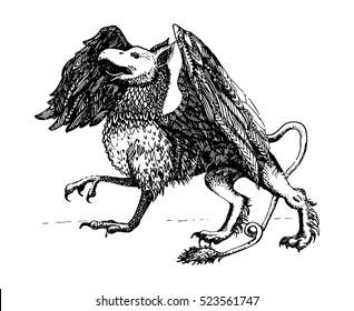 Griffin.Legendary creature. Heraldic symbol. Vintage hand drawn illustration.
