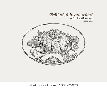 Grilled chicken salad with pesto sauce in a bowl. Hand draw sketch food vector.