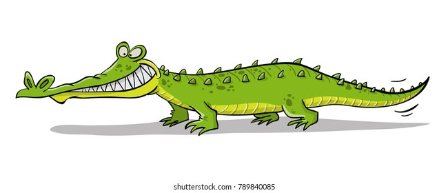 Grining crocodile with teeth