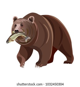 Grizzly Bear Catching Salmon Stock Illustrations Images Vectors