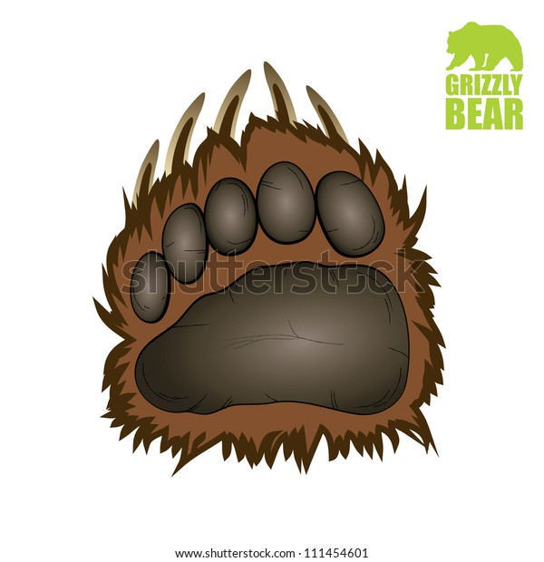 Grizzly bear paw - vector illustration