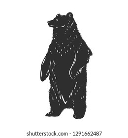 Grizzly Bear silhouette isolated on white. Vector illustration.