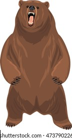 Grizzly bear. Vector