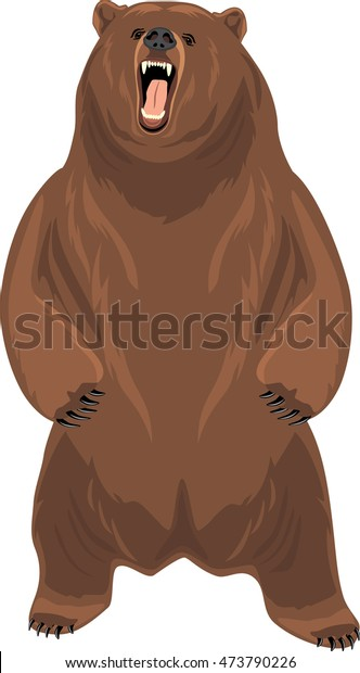 grizzly-bear-vector-600w-473790226.jpg