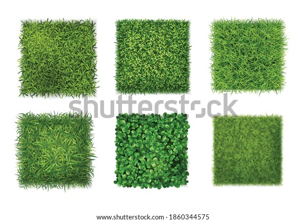 Ground cover plants background texture 6 realistic square icons set with green grass clover leaves vector illustration