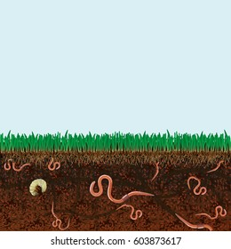 Ground cutaway with earthworms and grass.