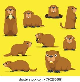 Groundhog Chuck Woodchuck Groundpig Whistlepig Cute Cartoon Vector Illustration