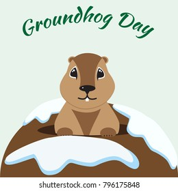 Groundhog Day card with cute marmot