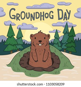 Groundhog day. Cute groundhog looking out from the burrow on picturesque pine forest and morning sky background. Line vector illustration. Colored cartoon style.